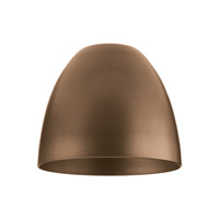Transitions Antique Bronze Directional Glass/Shade