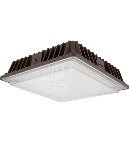 Ceiling Light Canopy