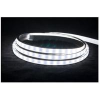 American Lighting 120-H2-WH Hybrid 2 Bright White 5000K 1800 inch Tape Light Reel