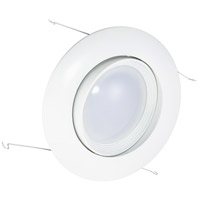 Economy Swivel White Downlight