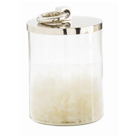 Arteriors 2505 Brooke Polished Nickel and Clear Container, Medium