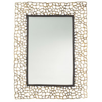 Bransen 40 X 30 inch Polished Brass/Bronze Mirror Home Decor