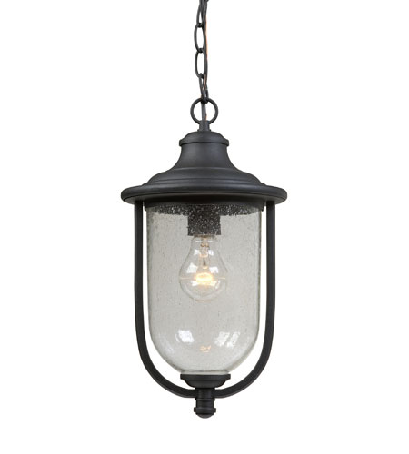 Artcraft Lighting Monterey Bay 1 Light Outdoor Pendant in Black AC8045BK photo