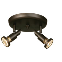 Shuttle 2 Light Oil Rubbed Bronze Track Light Ceiling Light