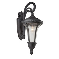 Artcraft Lighting Rio 1 Light Outdoor Wall in Graphite AC8031GR