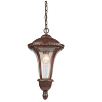 Artcraft Lighting Rio 1 Light Outdoor Pendant in Mahogany AC8035MA