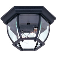 Classico 2 Light 11 inch Black Outdoor Ceiling Light