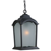 Artcraft Lighting Hartford 1 Light Outdoor Pendant in Black w/ Bronze Highlights AC8115BG