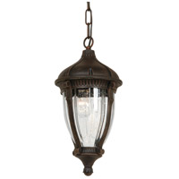 Anapolis 4 Light 16 inch Oil Rubbed Bronze Outdoor Pendant