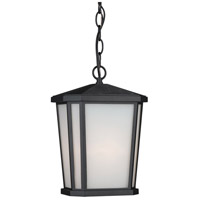Hampton 1 Light 8 inch Black Outdoor Pendant