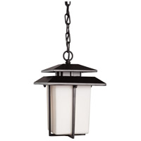 ARTCRAFT Bayshore 1 Light Outdoor Pendant in Black AC8945BK