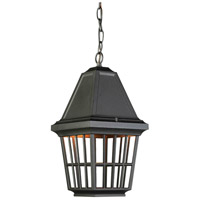 ARTCRAFT Castille 1 Light Outdoor Pendant in Black AC8965BK