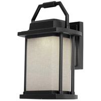 Lemans LED 11 inch Black Outdoor Wall Light