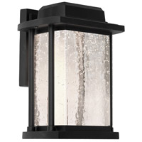Addison LED 9 inch Black Outdoor Wall Light
