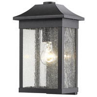 Morgan 1 Light 13 inch Black Outdoor Wall Light