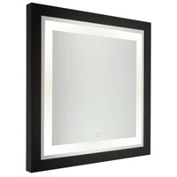 Valet 30 X 30 inch Matte Black Lighted Wall Mirror