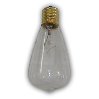 Edison Clear String Light Replacement Bulb
