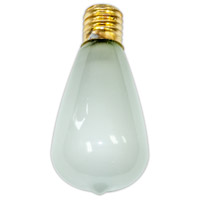 Edison Frost String Light Replacement Bulb