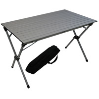 Table in a Bag 43 X 27 inch Silver Portable Picnic Table, Lightweight, Folding
