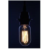 Aspen Brands T45 Edison Filament Amber Incandescent Oversized Bulb