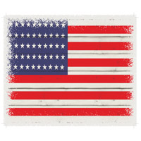 Flag Washed-Out White Decorative Wall Sign in USA