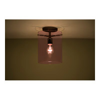 Pahu 1 Light 8 inch Bronze Semi-Flush Mount Ceiling Light in Incandescent, Transparent Amethyst Glass