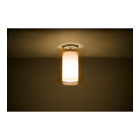 Pahu LED 8 inch Satin Nickel Semi-Flush Mount Ceiling Light in Transparent Armagnac/Opal Glass