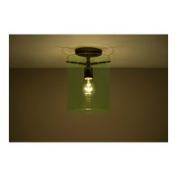 Pahu 1 Light 8 inch Bronze Semi-Flush Mount Ceiling Light in Incandescent, Transparent Olive Glass