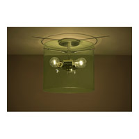 Pahu 3 Light 12 inch Satin Nickel Semi-Flush Mount Ceiling Light in Incandescent, Transparent Olive Glass