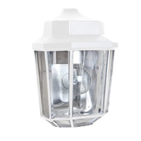 Costaluz 3028 Series 1 Light 10 inch White Outdoor Sconce in Clear Glass