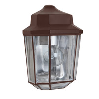 Costaluz 3028 Series 1 Light 10 inch Bronze Outdoor Sconce in Clear Glass