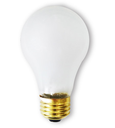 A-Type Rough Service Light Bulbs