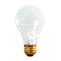 Bulbrite Shatter Resistant 100W Standard A19 Bulb 100A/RS/TF