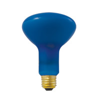 Bulbrite 100R30PG Plant Grow Incandescent R30 E26 100 watt 120V 2700K Bulb photo thumbnail