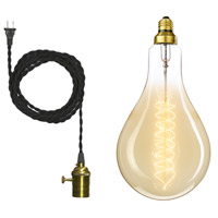 Grand Nostalgic 1 Light Black Swag Pendant Ceiling Light, Spiral