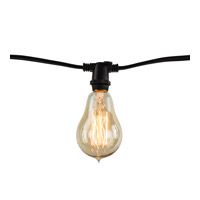 Signature Black 2200K 14 inch String Light
