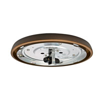 Casablanca 99077 Fan Accessory 2 Light Incandescent Maiden Bronze Fan Light Kit