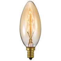 Glass Edison Light Bulbs