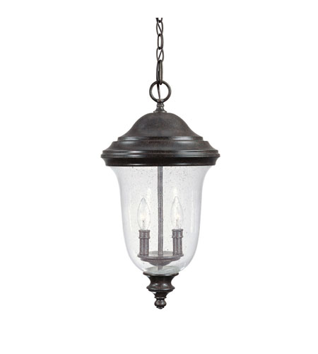 Capital Lighting Dawson 2 Light Outdoor Hanging Lantern in New Tortoise with Seeded Glass 9518NT photo