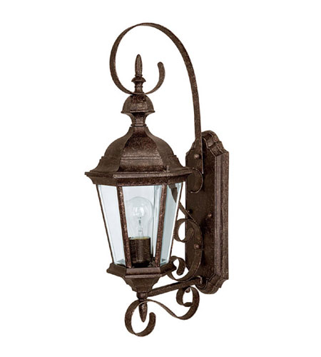 Capital Lighting 9721TS Carriage House 1 Light Tortoise Outdoor Wall Lantern photo