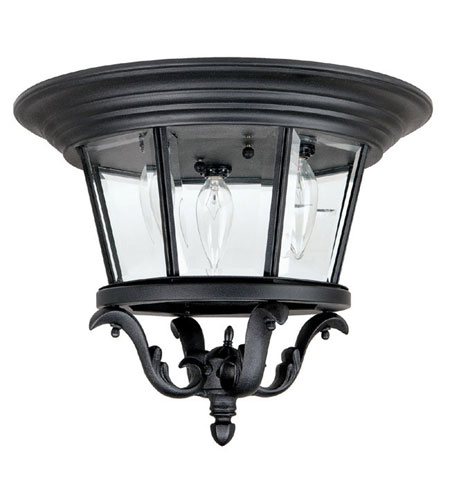 Capital Lighting Madison 3 Light Outdoor Ceiling in Black with Clear Glass 9758BK photo