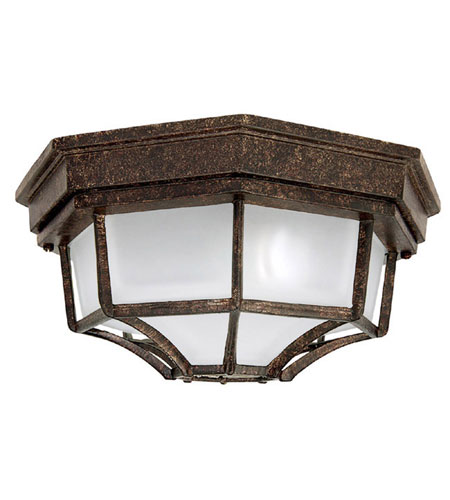 Capital Lighting 9800TS Signature 2 Light 11 inch Tortoise Outdoor Ceiling photo