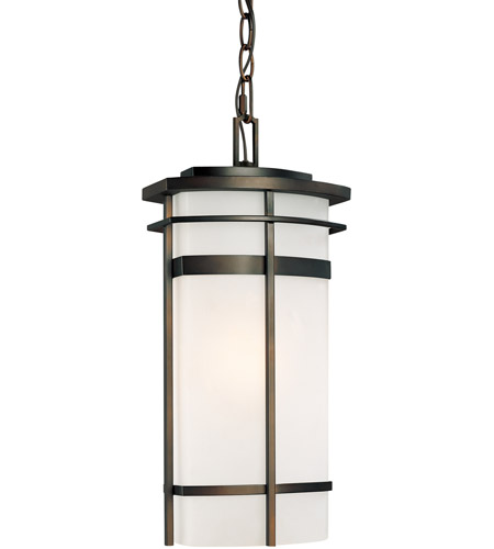 Capital Lighting 9885OB Lakeshore 1 Light 8 inch Old Bronze Outdoor Hanging Lantern photo