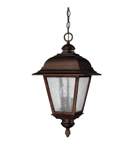Capital Lighting Brookwood 3 Light Outdoor Hanging Lantern in Burnished Bronze with Seeded Glass 9966BB photo