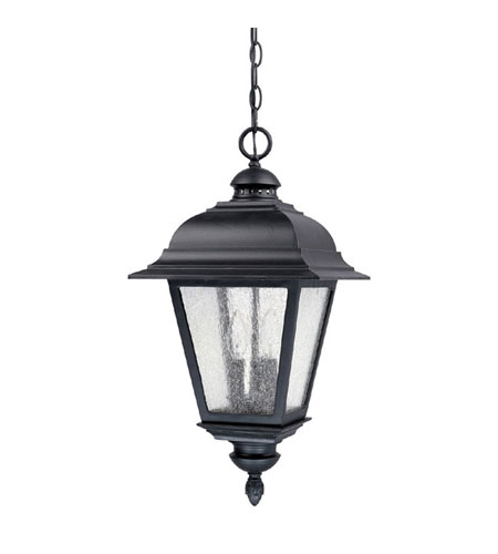 Capital Lighting Brookwood 3 Light Outdoor Hanging Lantern in Black with Seeded Glass 9966BK photo