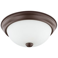 HomePlace 2 Light 11 inch Bronze Flush Mount Ceiling Light