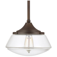 Signature 1 Light 11 inch Burnished Bronze Mini-Pendant Ceiling Light in Clear Glass