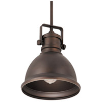Signature 1 Light 9 inch Burnished Bronze Pendant Ceiling Light