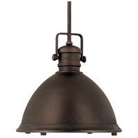 Signature 1 Light 19 inch Burnished Bronze Pendant Ceiling Light