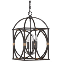 Capital Lighting Signature 4 Light Foyer Pendant in Surrey 4521SY